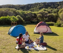 People camping, Tallow Beach campground, Bouddi National Park