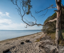Hobart Beach, Bournda National Park
