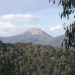 Mount Coree, Brindabella National Park