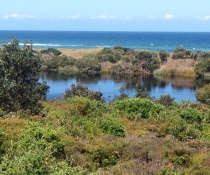 Bundjalung National Park, Target Lake