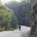 Visitor walks along the convict built Old Great North Road in Dharug National Park