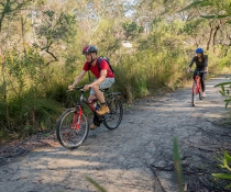 Mountain bike riding in Garigal National Park