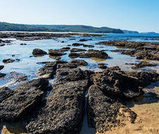 Rock platforms by Dudley Beach within Glenrock State Conservation Area.