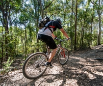 A mountain bike rider enjoying the Bombala track.