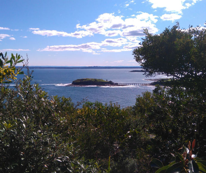 Bare Island viewed from Henry Head walking track, Kamay Botany Bay National Park