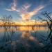 Lake Pamamaroo, Menindee Lakes, Kinchega National Park