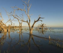 Menindee Lake Kinchega National Park