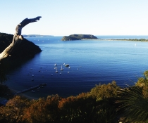 The Basin track and Mackerel track, Ku-ring-gai Chase National Park
