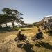 Camping, Point Plomer campground, Limeburners Creek National Park