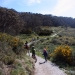 Bike riders and walkers on Thredbo Valley Track, Kosciuszko National Park