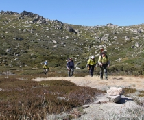 Hikers along Hannels Spur walking track, Kosciuszko National Park