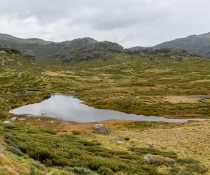 High country, Perisher to Charlotte Pass, Kosciuszko National Park