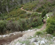Jindabyne Trail Stewardship Volunteers getting the Thredbo Valley Track ready for Summer 2017