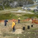 Vegetation rehabilitation underway Perisher