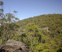 Lookout, Marramarra National Park