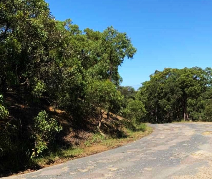 Road, Munmorah State Conservation Area
