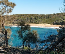 Myrtle Beach, Murramarang National Park