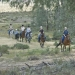 Horse riding in Murrumbidgee Valley National Park