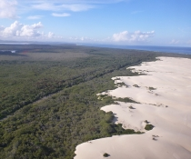 Myall Lakes National Park, Dark Point dunes