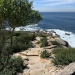 Improved stone steps at Provential Point, Royal National Park