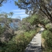 Improved walking track at Provential Point, Royal National Park