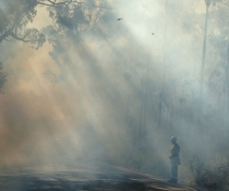 South Coast NPWS hazard reduction burning