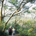 Couple walking on track in Tomaree National Park, Port Stephens
