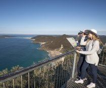 Tomaree National Park whale watching