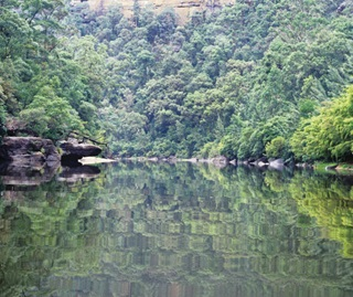Colo River wilderness, water reflections, Wollemi National Park
