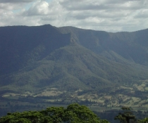View to the Pinnacle from Wollumbin National Park formally known as Mt Warning National Park