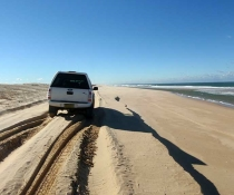 Stockton Beach erosion, Worimi Conservation Lands