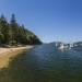Looking along the shores of The Basin, Pittwater