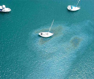 Yachts in a bay with oil leaking from one yacht