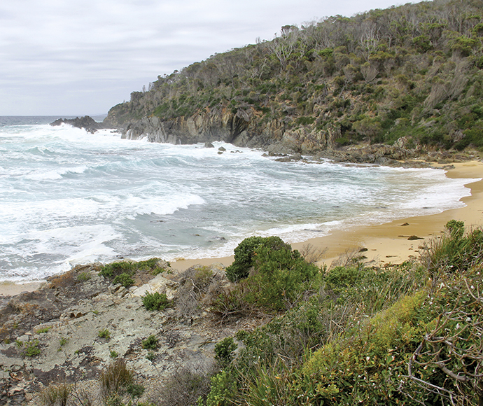 Beach south of Picnic Point Mimosa Rocks National Park