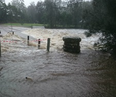 Storms and flooding battered NSW in April 2015, Lane Cove National Park