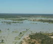 Warrego flooding between Fords Bridge and Engonnia