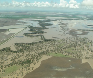 Aerial view of Gwydir Valley, Moomin Creek