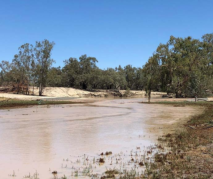 Darling River, first flow.