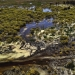 Aerial photo of the Lower Gwydir wetlands in flood