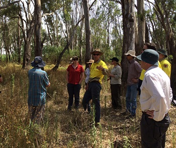 Murray Lower Darling Environmental Water Advisory Group in the field