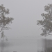 Mist over Piggery Lake, Yanga National Park