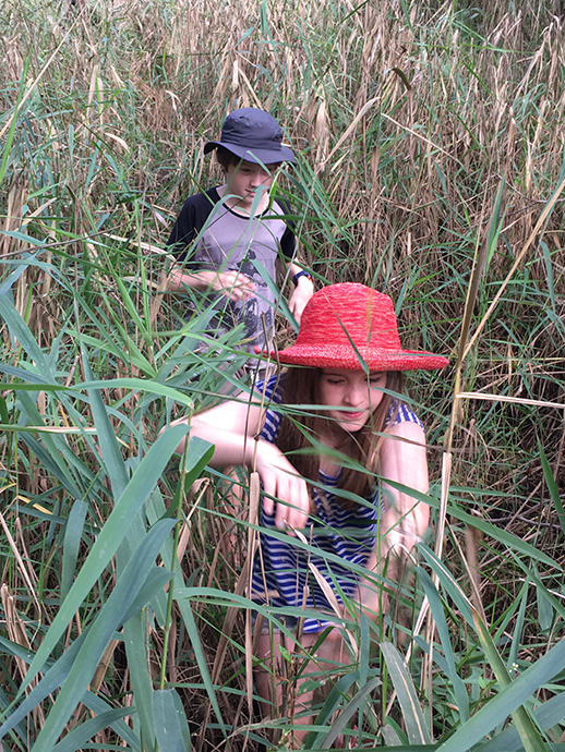 Two children walking through tall reeds.