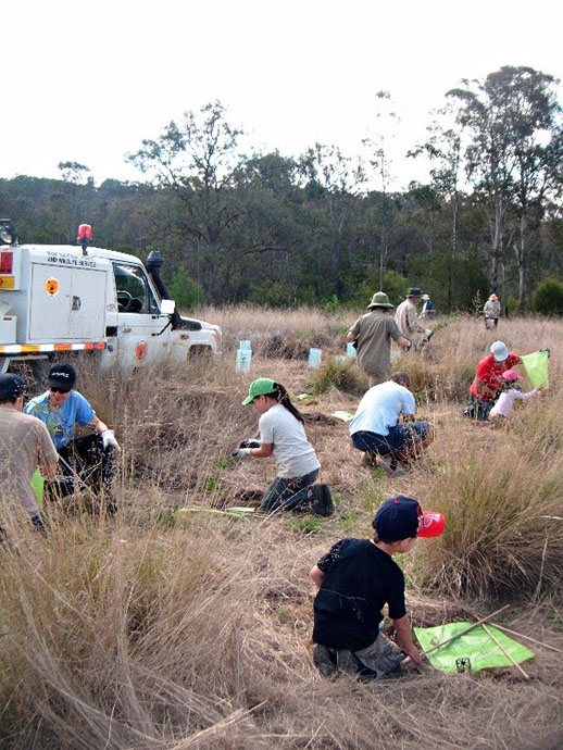 Yellomundee Aboriginal Bushcare Group weeding and revegetating native plants in Yellomundee Regional Park