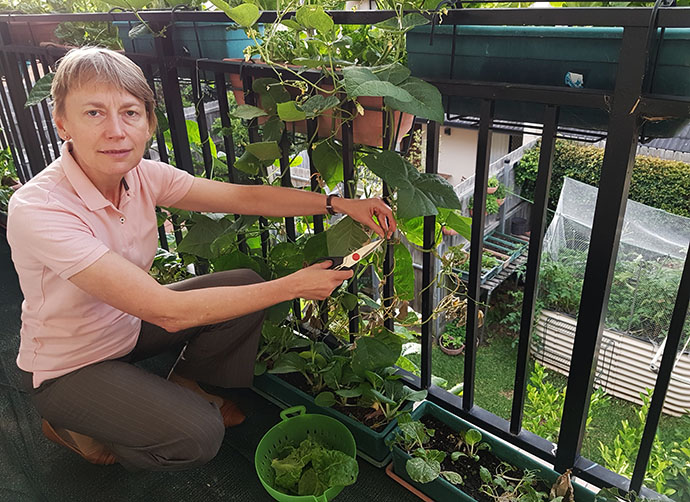 Woman bending on her knee holding scissors to trim edible plants growing on the railing of a first floor balcony. A vegetable patch in the backyard below can be seen through the railing.