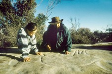 Inspecting rock art, Jibbon, Royal National Park