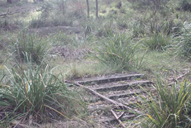 Steps to a hut located on the southern side of the Wingecarribee River - Berrima Internment Group