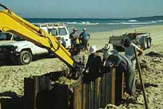 Excavation of remains under beach sand. Photo: David Nutley