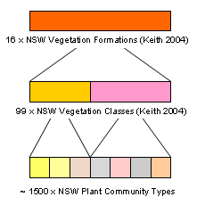 Figure 1: NSW vegetation classification hierarchy