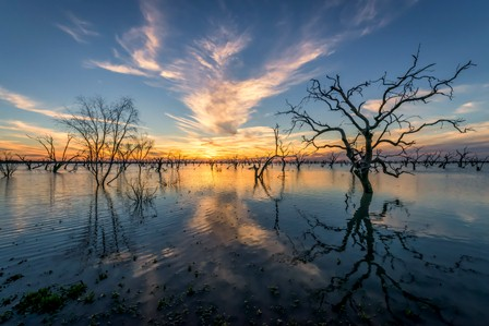 Lake Pamamaroo, Menindee Lakes, Kinchega National Park (Photo: J Spencer/OEH)
